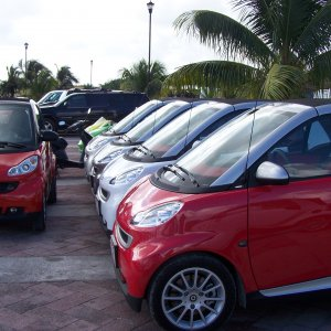 smarts for rent in Cozemel, Mexico  $65.00 per day